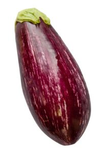 Eggplant from Lady Moon Farms