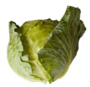 Cabbage from Lady Moon Farms