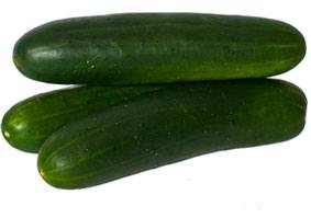 Cucumbers from Lady Moon Farms